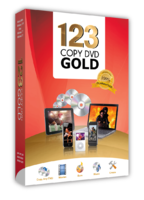 5381-partners-llc-123-copy-dvd-gold.png