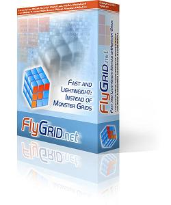 9rays-net-flygrid-net-annual-subscription-site-license-non-recurring-2598432.jpg