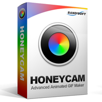 bandisoft-honeycam-1-pc-license.png