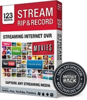 bling-software-ltd-stream-rip-record.png