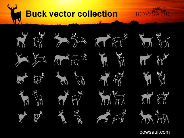 cartonus-vector-collection-buck-300515849.JPG