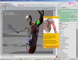 cloudstars-3d-virtual-human-anatomy-studio-300253852.JPG