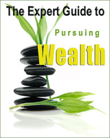 dynamic-dezyne-the-expert-guide-to-pursuing-wealth.jpg