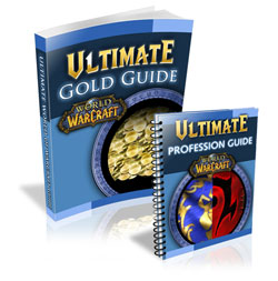 gold-leveling-guide-ultimate-wow-gold-guide-300321191.JPG
