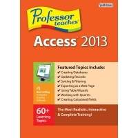 individual-software-professor-teaches-access-2013.jpg