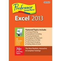 individual-software-professor-teaches-excel-2013.jpg