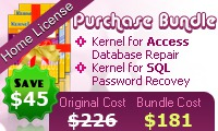kernelapps-pvt-ltd-access-recovery-home-license.jpg