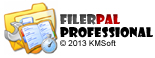 kmsoft-filerpal-professional-300592409.JPG