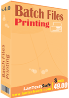 lantechsoft-batch-files-printing.png