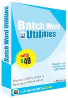 lantechsoft-batch-word-utilities-christmas-offer.png