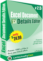 lantechsoft-excel-document-details-editor-christmas-offer.png