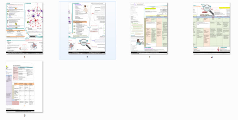 maha-mohamed-asthma-concept-map-whole-map-300651845.JPG