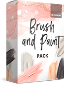 movavi-brush-and-paint-pack.png