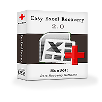 munsoft-easy-excel-recovery-business-license-300377587.PNG