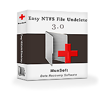 munsoft-easy-ntfs-file-undelete-business-license-300281501.PNG