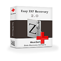 munsoft-easy-zip-recovery-business-license-300398085.PNG