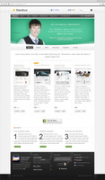 panda-wordpress-themes-starttica-v-2-wordpress-theme-extended-licence.jpg