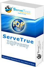 servetrue-technologies-servetrue-reverse-iqproxy-professional-business-license-300091035.PNG