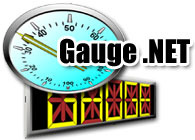 steware-technology-inc-steware-gauge-net.jpg