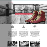 themeshift-business-portfolio-wordpress-theme-delaila.jpg