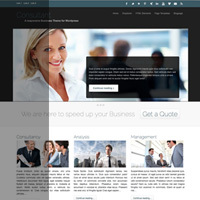 themeshift-business-wordpress-theme-consultant.jpg