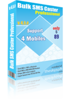 theskysoft-bulk-sms-caster-professional-10-discount.png