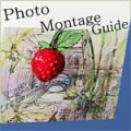tintguide-photo-montage-guide.jpg