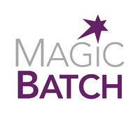 transmagic-transmagic-magicbatch-annual-subscription.png