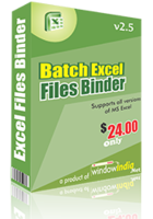 window-india-batch-excel-files-binder-25-off.png