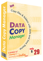 window-india-data-copy-manager-festival-season.png