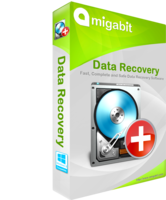 amigabit-amigabit-data-recovery-pro-thanksgiving-sale.png