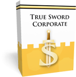 security-stronghold-true-sword-corporate.png